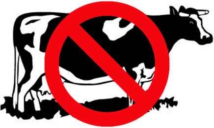 dr-oz-diet-banned-cow