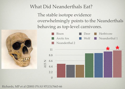 Neanderthal Diet by Michael P. Richards
