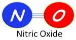 Nitric Oxide Diet