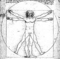 Da Vinci Man - Human Biology