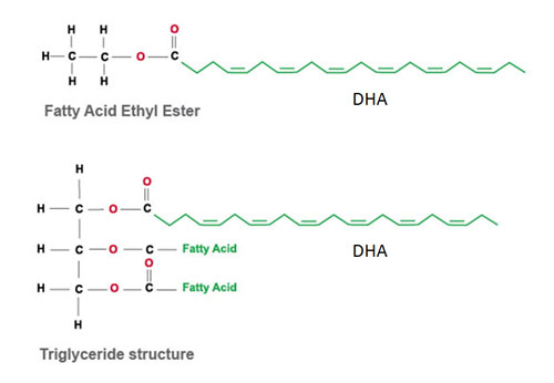 fatty acid ester and triglyceride with dha