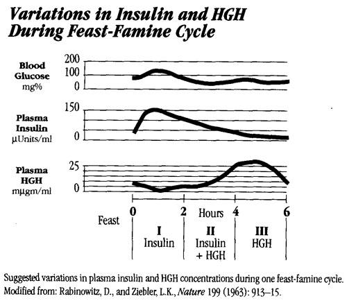 meal spacing vs hormones