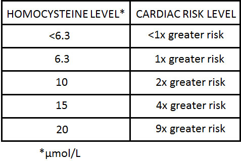 homocysteine levels and heart disease risk