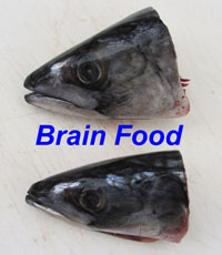 mackerel heads - norway with label