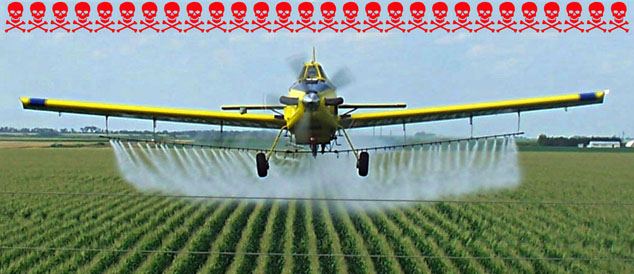 glyphosate toxicity