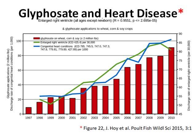 glyphosate toxicity - heart disease