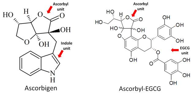 ascorbigen - ascorbyl-EGCG